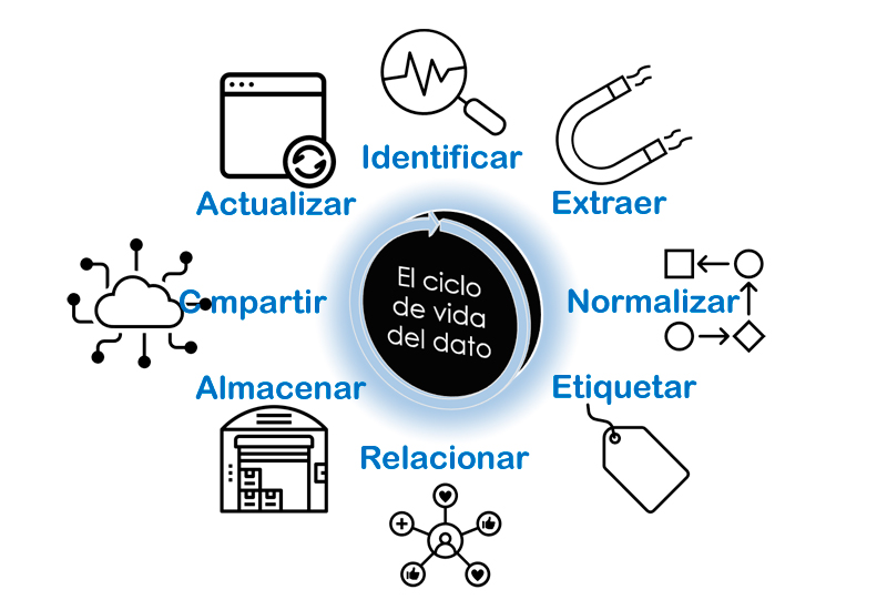 ciclo de vida del dato